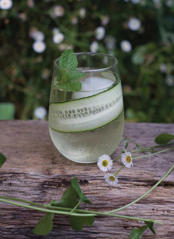 ... spritzer blueberry lavender vodka spritzer cucumber spritzer recipe