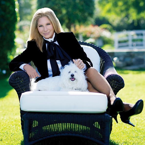 Barbara Streisand joins Instagram