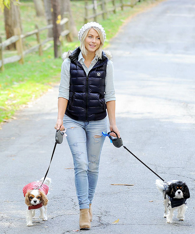 Julianne Hough's Dogs