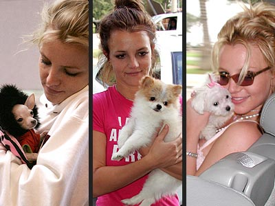 PRACTICE MAKES PERFECT photo   Britney Spears