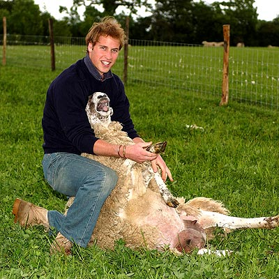 LOOKING SHEEPISH photo | Prince William