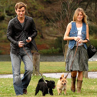 PUPPY LOVE photo | Jude Law, Sienna Miller