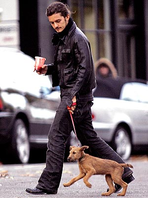 LEASH ON LIFE photo | Orlando Bloom