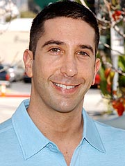 David Schwimmer to Debut on Broadway | David Schwimmer