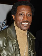 Wesley Snipes Pleads Not Guilty to Tax Fraud | Wesley Snipes
