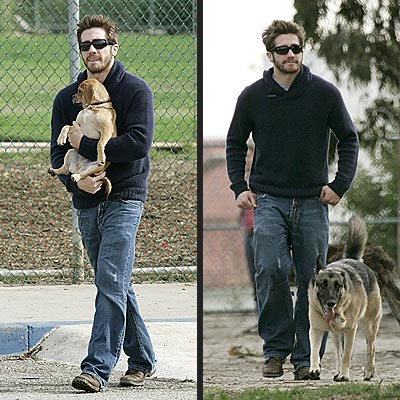 DOG PACK photo | Jake Gyllenhaal