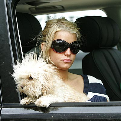 GIRL'S BEST FRIEND photo | Jessica Simpson