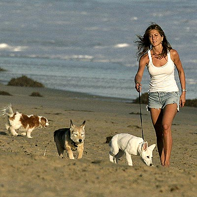 A DOG'S LIFE  photo | Jennifer Aniston