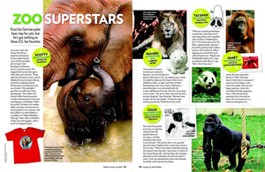 Zoo Superstars