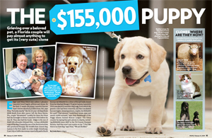 The $155,000 Puppy