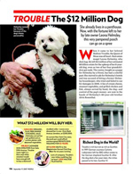 Trouble: The $12 Million Dog