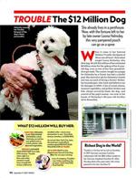 Trouble: The $12 Million Dog