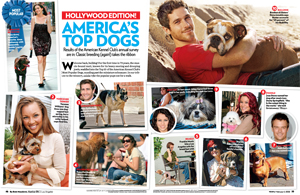 Hollywood Edition! America's Top Dogs