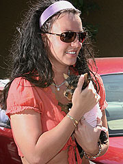 Britney Spears Buys a New Dog