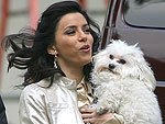 Beauties & Their Beasts | Eva Longoria