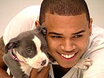 Chris Brown | Chris Brown