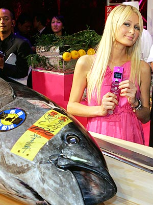 CATCH OF THE DAY photo | Paris Hilton
