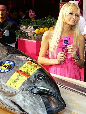 CATCH OF THE DAY photo | Paris Hilton