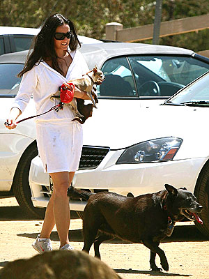 DOGGIE DUTY photo | Demi Moore