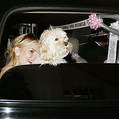 PARTY ANIMALS photo | Jessica Simpson