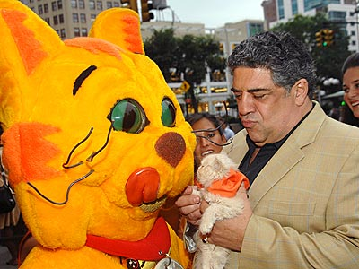 COOL CATS photo | Vincent Pastore