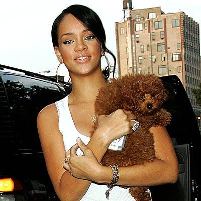 HIGH-END SHOPPERS  photo | Rihanna
