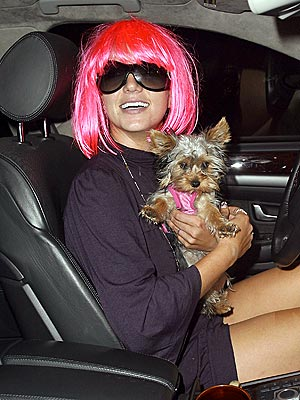 WIGGING OUT? photo | Britney Spears