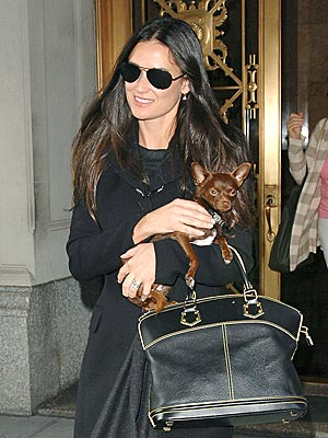 DOGGONE CUTE photo | Demi Moore