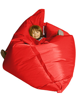 Remember The Bean Bags You Had In The U002780s? You Could Flop On It But A  Bunch Of Beads Would Always Shoot Out Of The Inevitable Hole In The Seam.