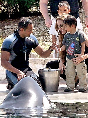 WHALE OF A DAY  photo | Angelina Jolie, Maddox Jolie-Pitt, Pax Thien Jolie-Pitt