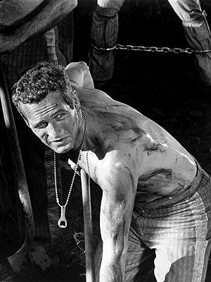 COOL HAND LUKE photo | Paul Newman