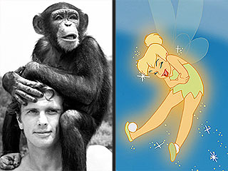 Tinkerbell Beats Out Tarzan's Chimp for Hollywood Star
