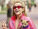 From Tinkerbell to Taco Bell: A Chihuahua History| Britney Spears, Paris Hilton