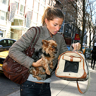 DOGGIE BAG photo | Gisele Bundchen
