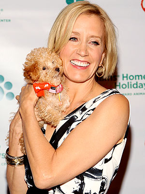 ANIMAL ATTRACTION photo | Felicity Huffman