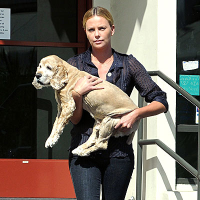 DOG CARRIER photo | Charlize Theron