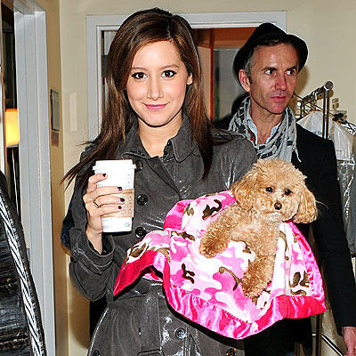 HANDLER WITH CARE photo | Ashley Tisdale