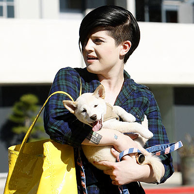 Kelly Osbourne with more pups, Funny Pictures, Cute Photos
