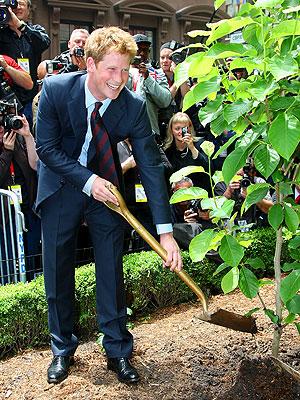 photo | Prince Harry