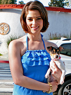 Twilight Star Ashley Greene's Puppy Love