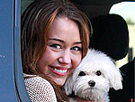 Stars & Their Pets: Cutest Cuddles of 2009!