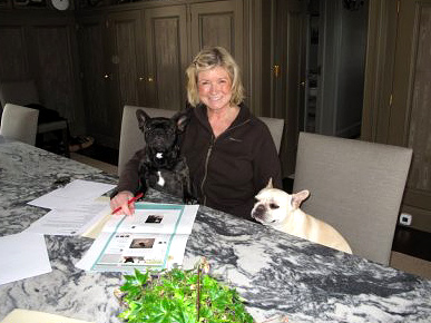 Martha Stewart's Dogs Start a Blog