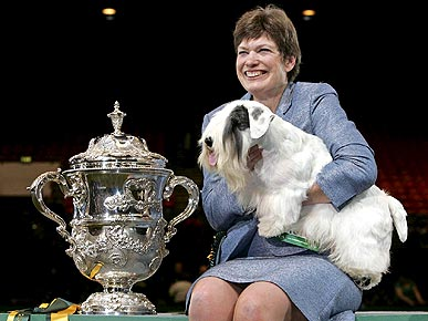 American Sealyham Terrier Wins Best in Show at Crufts