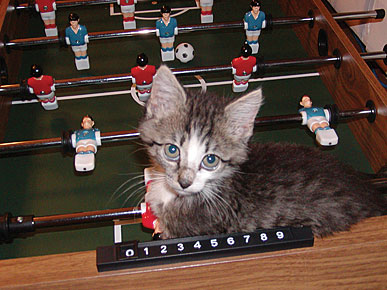 Caption Contest: What's Lexie Doing on the Foosball Table?