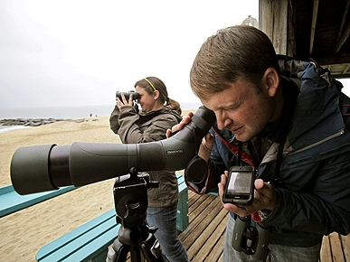 Bird-Watchers Migrate to the World Series of Birding