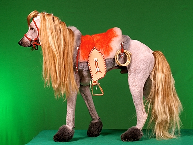 Horse or ... Poodle? It's Dog Grooming Gone Wild!
