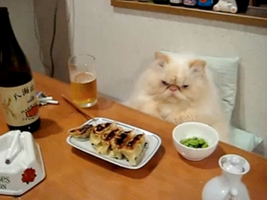 Friday's Funny Video: Dinner and a Death Stare!