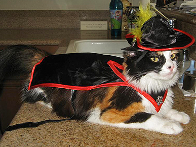 Kitties in Costume! 5 Tips for Dressing Your Cat This Halloween