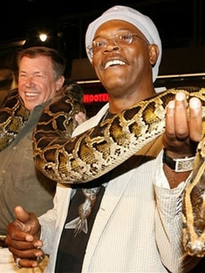 Hollywood's No. 1 Snake Wrangler Has Never Been Bitten!