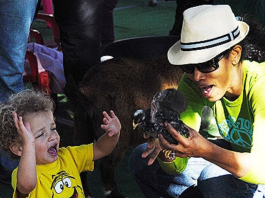 Spotted: Garcelle Beauvais-Nilon&#39;s Petting Zoo Pit Stop